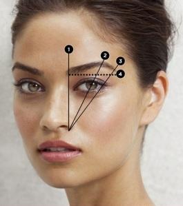 Es importante ubicar los límites de tu ceja antes de depilar.